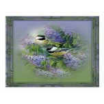Lilacs & Birds Postcard