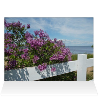Lilacs by the Water Card