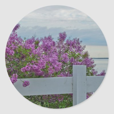 Lilacs by the Water Classic Round Sticker