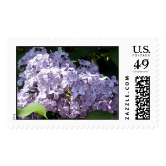 Lilacs in Full Bloom Postage