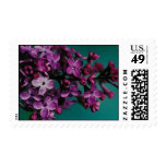 lilacs in my garden stamps
