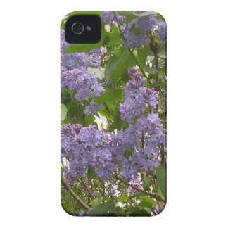 Lilacs iPhone 4 Case