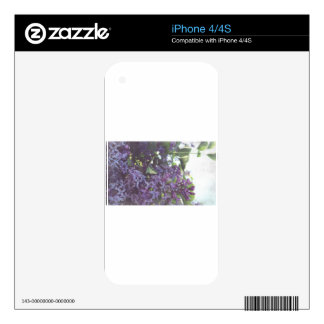 Lilacs iPhone 4 Decal