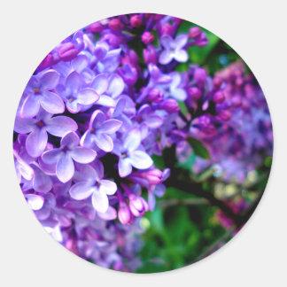 Lilacs Round Sticker