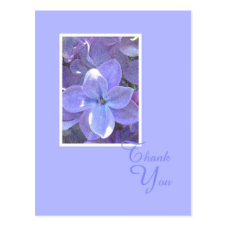 Lilacs Sympathy or Death Thank You Postcard