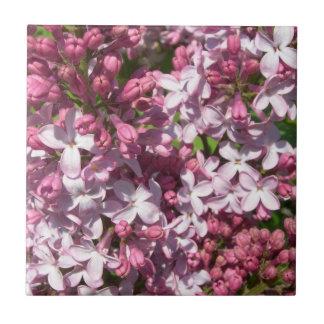 Lilacs  Tile