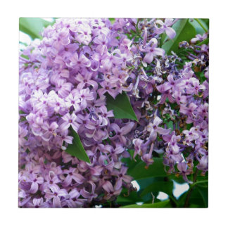 Lilacs Small Square Tile