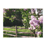 Lilacs Tress Gallery Wrapped Canvas