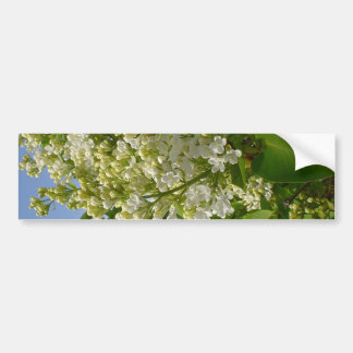 Lilas blancas en la floración pegatina para auto