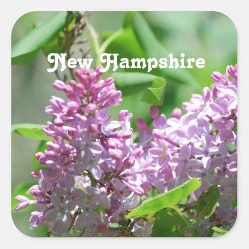 Lilas de New Hampshire Calcomanía Cuadrada Personalizada