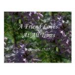 lilas del ~ proverbs17-17 tarjeta postal