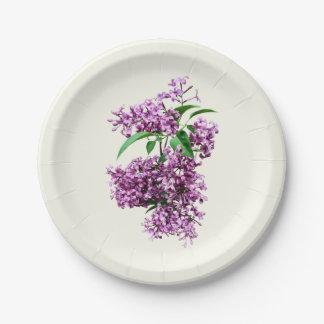Lilas elegantes platos de papel