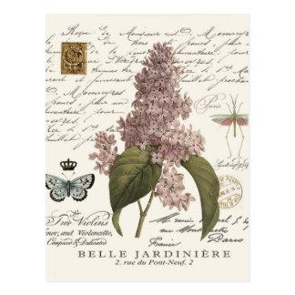 lilas modernas del francés del vintage tarjeta postal