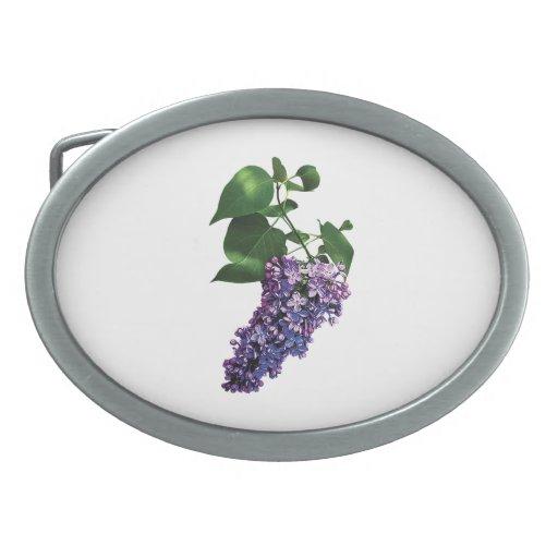Lilas púrpuras agraciadas hebillas cinturón ovales