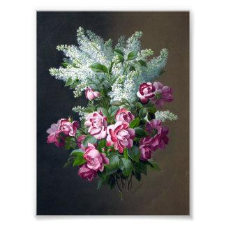 Lilas púrpuras del rosa del vintage y blancas fotografía