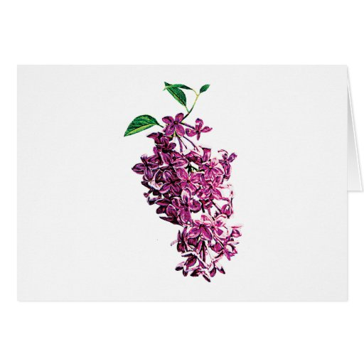 Lilas rosadas delicadas tarjeta de felicitación
