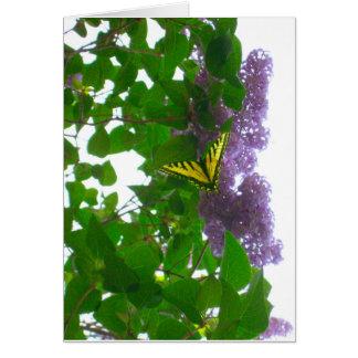Lilas y tarjeta amarilla de la mariposa de Swallow
