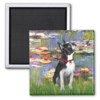 Lilies 2 - Boston Terrier 2 Magnet