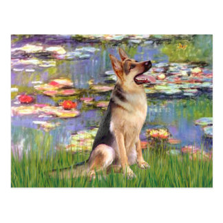 Lilies 2  -  German Shepherd 1 Post Cards
