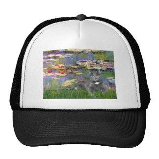Lilies 2 - Grey cat Mesh Hat