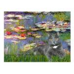 Lilies 2 - Grey cat Post Card