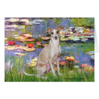 Lilies 2 - Italian Greyhound 5 Card