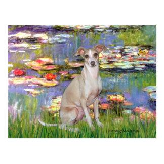 Lilies 2 - Italian Greyhound 5 Postcard