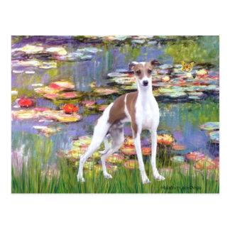 Lilies 2 - Italian Greyhound 7 Postcard