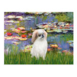 Lilies 2 - Japanese Chin (L2) Postcards
