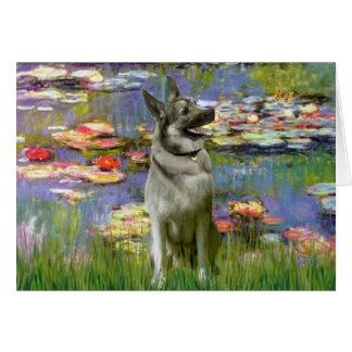 Lilies 2 -Norwegian Elkhound Greeting Card