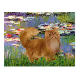 Lilies 2 - Red Persian cat Postcard