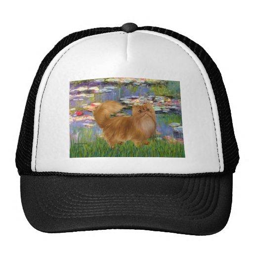 Lilies 2 - Red Persian cat Trucker Hats
