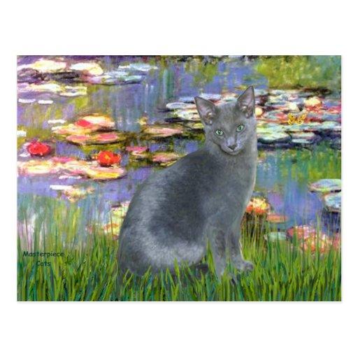 Lilies 2 - Russian Blue cat 2 Postcard