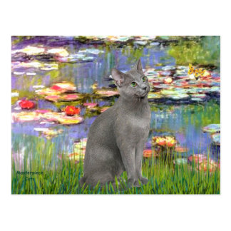 Lilies 2 - Russian Blue cat Post Cards