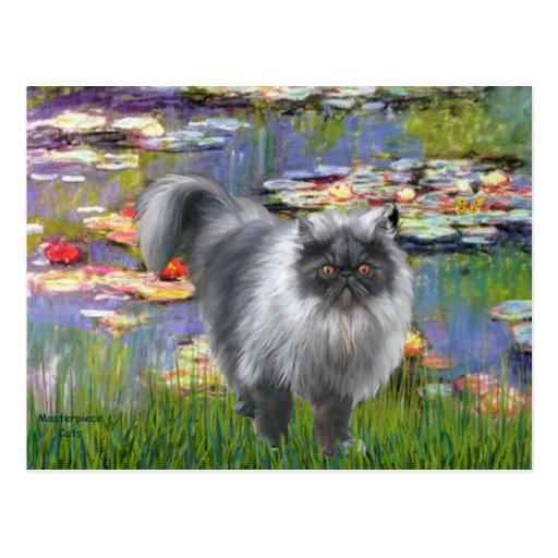 Lilies 2 - Silver Persian cat Postcard