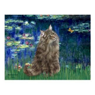 Lilies 5 - Norwegian Forest cat Postcard