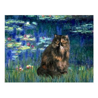 Lilies 5 - Persiasn Calico cat Postcard
