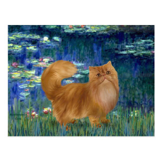 Lilies 5 - Red Persian cat Postcard