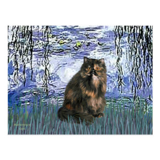 Lilies 6 - Persian Calico cat Postcard