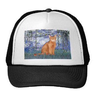 Lilies 6 - Red Abyssinian Hats