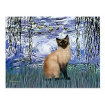 Lilies 6 - Seal Point Siamese cat Postcard