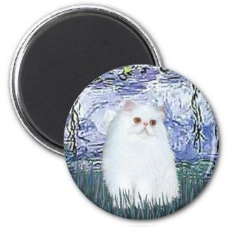 Lilies 6 - White Persian kitten #49 Magnet