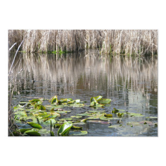 Lilies and Cattails 5x7 Paper Invitation Card