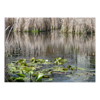 Lilies and Cattails Large Business Cards (Pack Of 100)