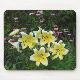 Lilies and Cone Flowers Mouse Pad