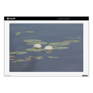 Lilies and Dragonfly Laptop Decals