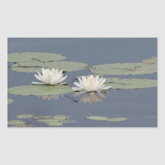 Lilies and Dragonfly Rectangular Sticker
