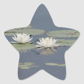 Lilies and Dragonfly Star Sticker