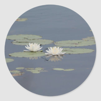 Lilies and Dragonfly Classic Round Sticker