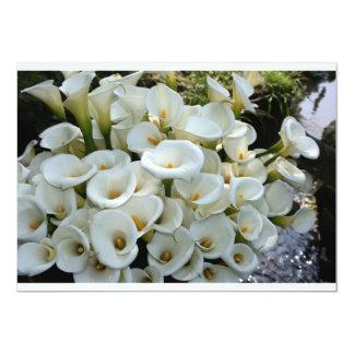 Lilies at Calla Lily Plantation, Taiwan 5x7 Paper Invitation Card